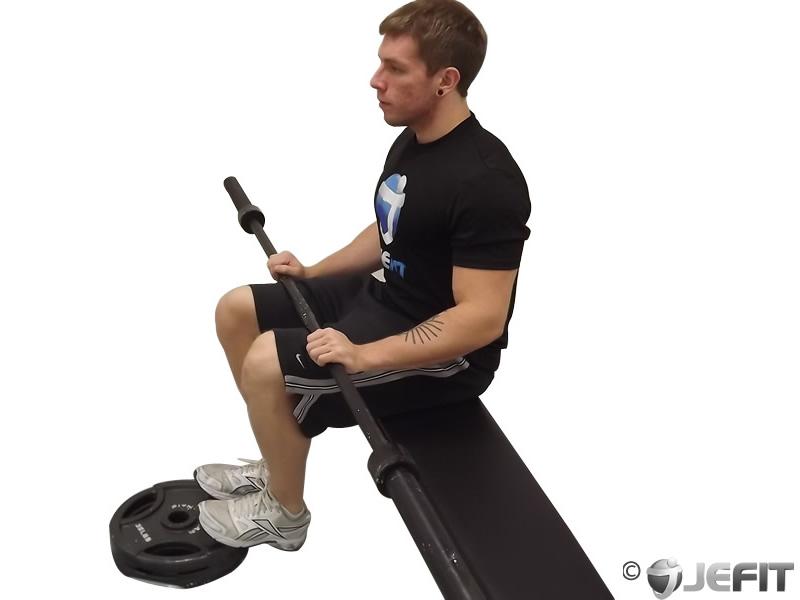 Barbell Seated Calf Raise Exercise Database Jefit