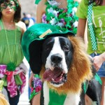 Oklahoma Color: St. Patrick's Day Parade, Graffiti