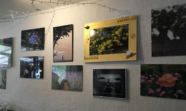 25 photographes exposent Chez Mémé 02