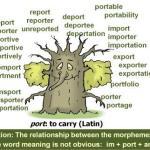 port_tree_sme_png_34KB