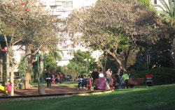 Kupfer-111111-Park