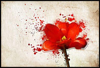 Progressive Flower
