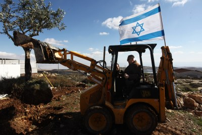 Knesset Speaker Reuven Rivlin planting an olive tree during a visit at the settlement of Migron in the Benjamin region. Jan 12, 2012. Rivlin called on the government to take responsibility for the current situation, in which the High Court ordered homes demolished by the end of March.