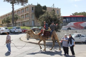 The added police presence will ensure that tourists on the Mount of Olives will be safe. Seven Arches Hotel in background.