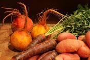 Fruchter-071312-Veggies