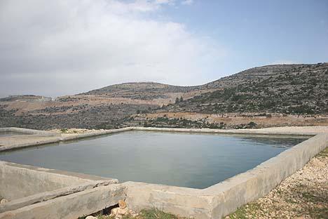 Water spring in Samaria./ Avishai Zorzinsky, Tazpit News Agency.