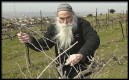 A settler tending to his vineyard in the settlement of Bat Ayin. European anti-settlement activists are pushing to curtail the sale of products from Judea and Samaria.