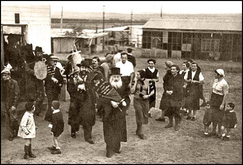 Haredi Zionists