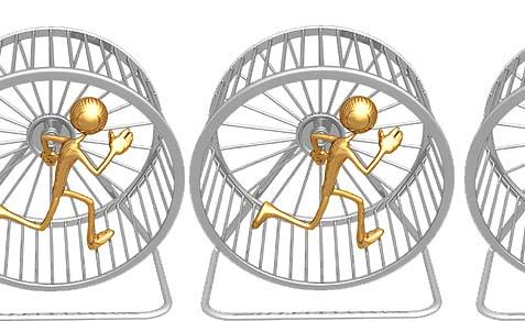 Hamster-Wheel-Runner