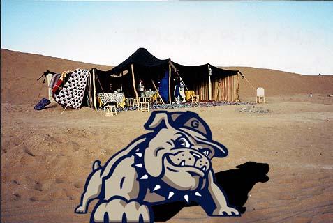 Georgetown Bedouines