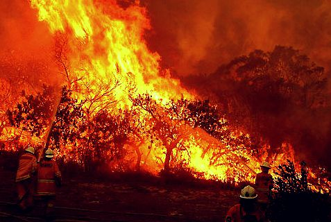 Dozens of fires in Australia have force some Jews to leave their homes and move in to a Chabad House.
