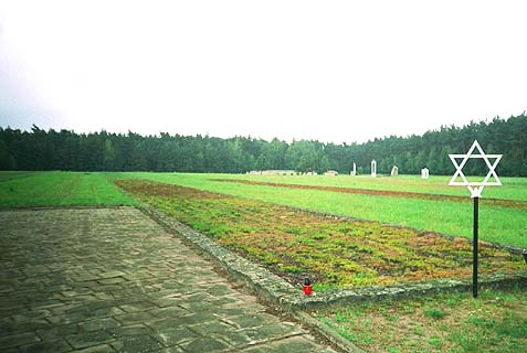One of the mass graves at Chelmno.