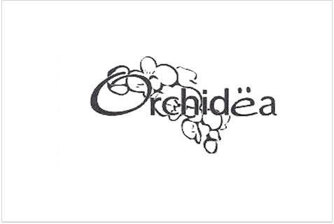 Orchidea-012414-Logo