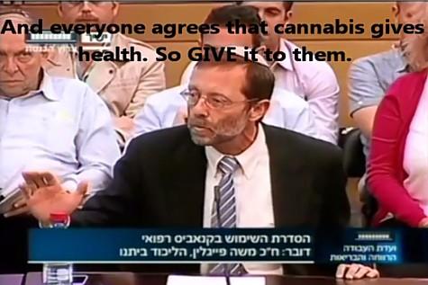 Feiglin Cannabis