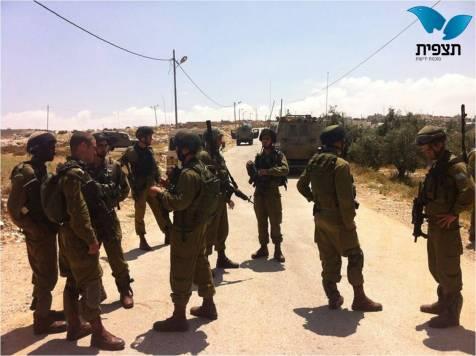 IDF Search