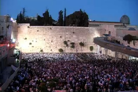 Packed Kotel