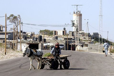 A Palestinian Authority Arab man riding on a donkey cart near Rafah.