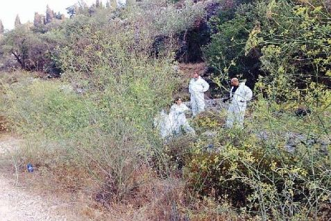 Police forensics at the scene examining body found in the Jerusalem forest Thursday, Aug. 28, 2014.