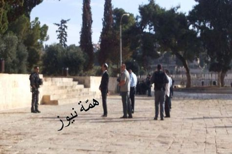 Arabs photograph and distribute pictures of Moshe Feiglin on the Temple Mount, Nov. 2, 2014.