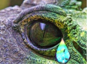 CrocodileTears.jpg