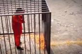 Captive Jordanian pilot Muath al-Kasaesbeh awaits imminent execution by ISIS - Islamic State terror group.
