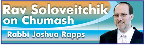 Rapps-Rabbi-Joshua-logo-NEW