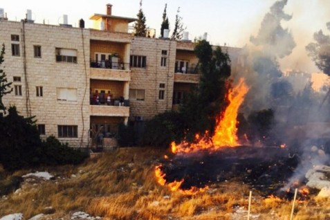 Arab threw firebombs at Jewish residential buildings in Beit Hanina