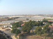 Greenhouses like these were the core of the Gush Katif economy