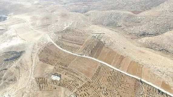 Illegally built PA road to the Dead Sea.