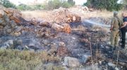 Karmei Tzur Brush Fire Arson