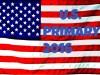 PRIMARY FLAG