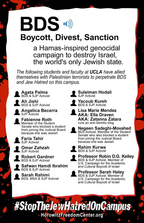 anti-BDS poster 2