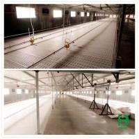 plastic slat floor,plastic poultry flooring,chicken house ...