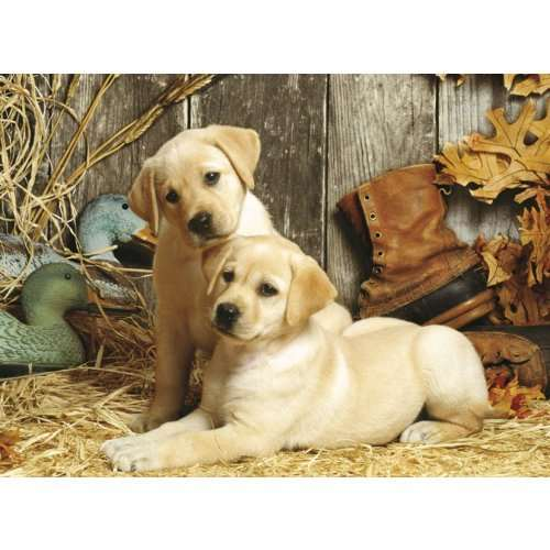 Wallpaper Perritos 3d Hunting Dogs Jigsaw Puzzle From Jigsaw Puzzles Direct