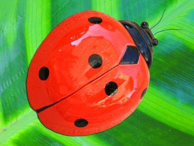 image ladybug promo 6 jpg miraculous ladybug wiki wikia ladybugs