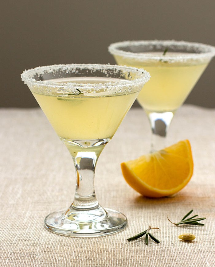 Rosemary Meyer Lemon Drop on JillHough.com