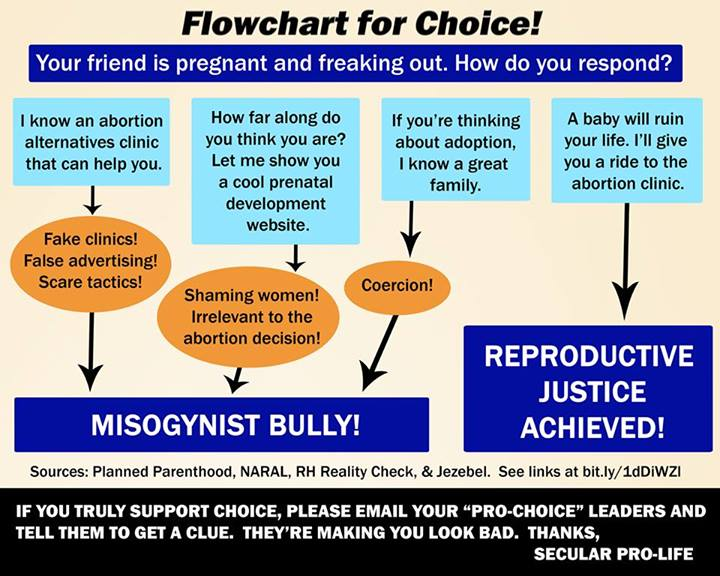 Flowchart for Choice! Pro-Life Pinterest Flowchart and Pro life - process flow diagram in word