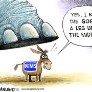 63055565-midterm-elections-2010