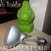 green-buddha-sez-1