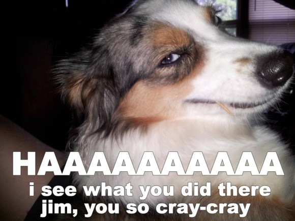 jim-you-so-crazy