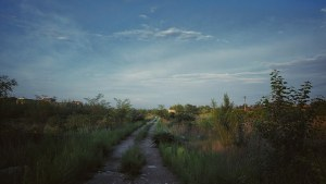 path-867224__340