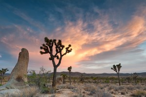 Sunset at Hidden Valley in Joshua Tree National Park. JLongPhoto.com