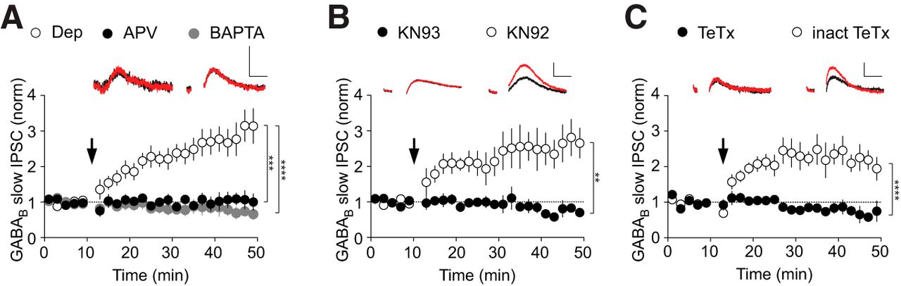 Firing Modes of Dopamine Neurons Drive Bidirectional GIRK Channel