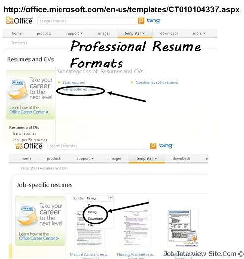Professional Resume Format How to Write a Professional Resume - resume format for it professional