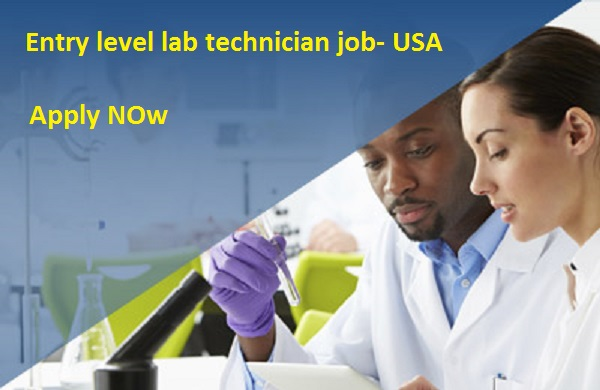 Entry Level Lab Technician Jobs - Chemistry United States - chemical engineering job description