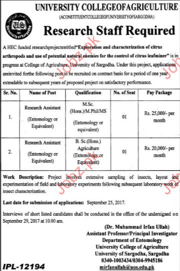 Research Assistant Jobs In University College Of Agriculture 2018
