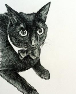 Charlie Drawing