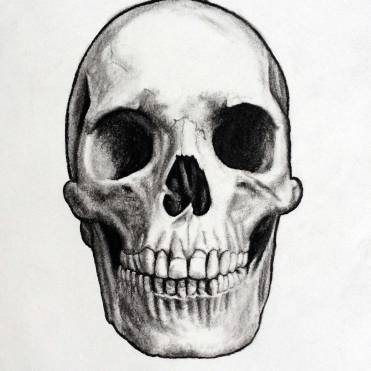 Skull-Charcoal-Drawing-by-John-Gordon