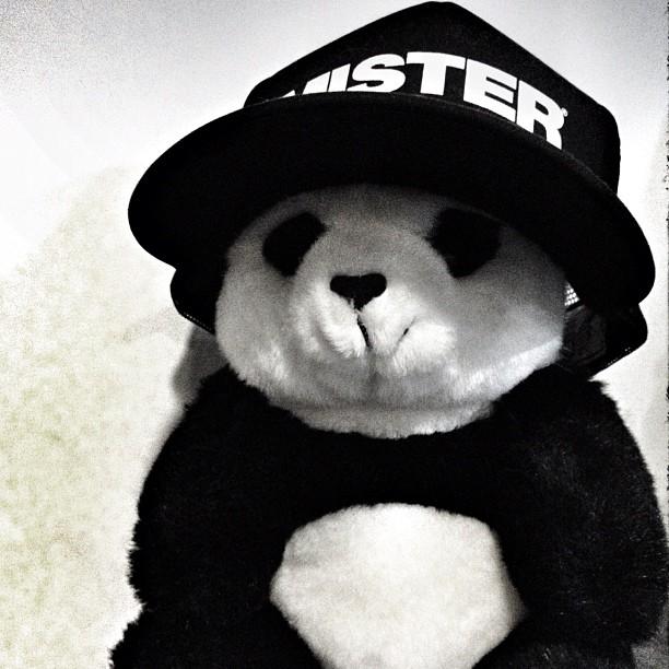 Mister Panda