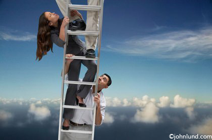 Success Climbing Animals Corporate Ladder Funnypictures